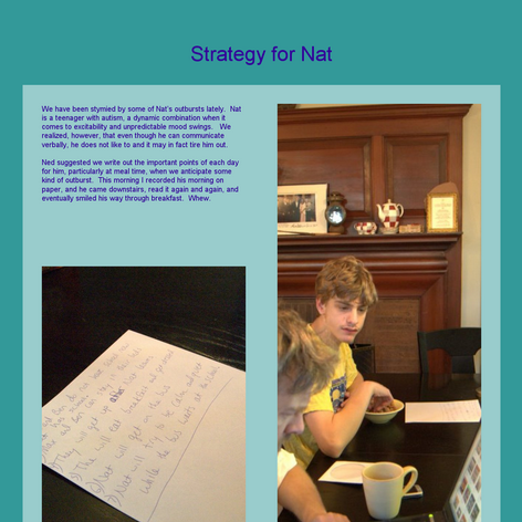 Tabblo: Strategy for Nat
